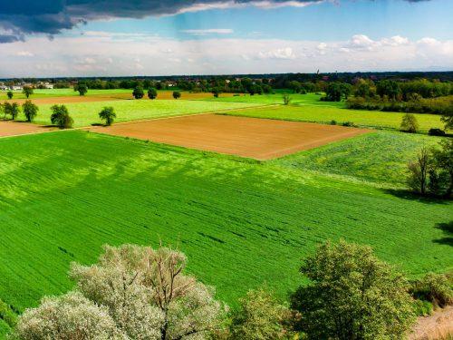 """Corso di formazione GRATUITO tramite FORMACOOP- """"Il sistema agroalimentare italiano e la sua sostenibilità per i produttori agricoli del territorio"""""""